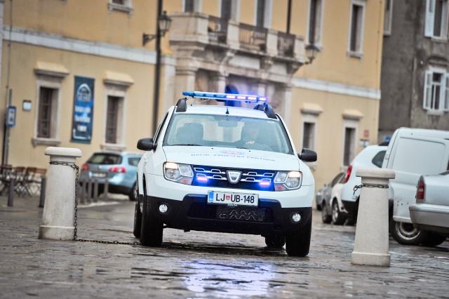 GRZS_predaja_avtomobila_30 (Custom)